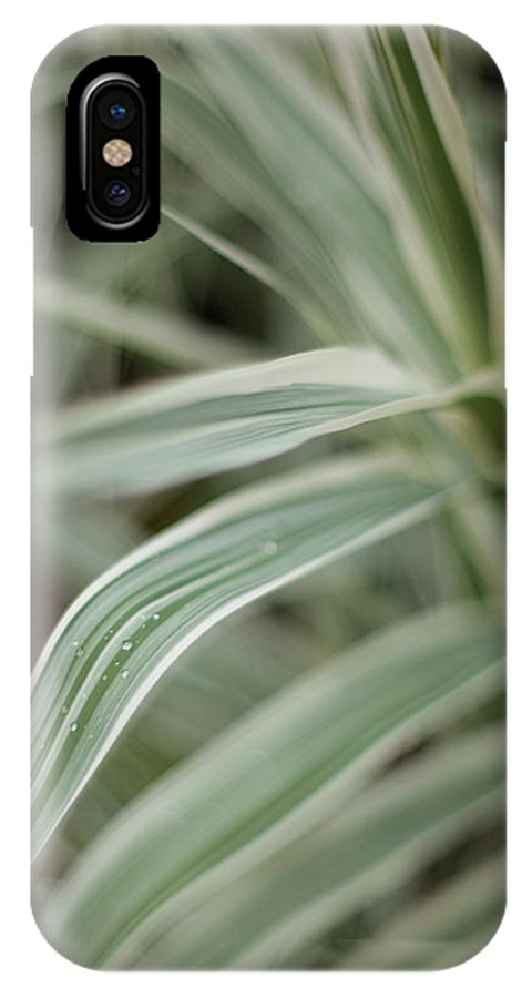 Grass IPhone X Case featuring the photograph Drops Of Grass Symmetry by Mike Reid