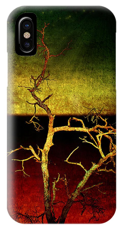 Abstract IPhone X Case featuring the photograph Drought by Ellen Heaverlo