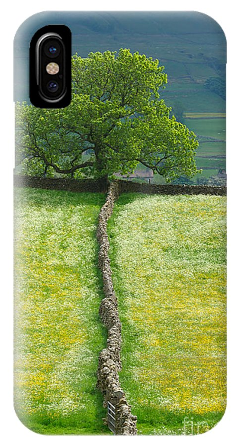 Dry IPhone X Case featuring the photograph Dry Stone Wall And Lone Tree by Louise Heusinkveld