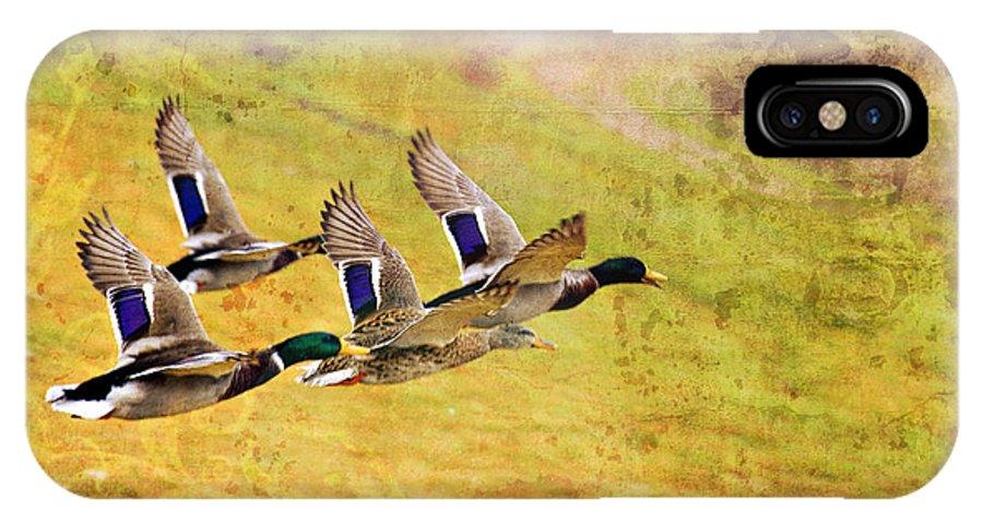 Ducks In Flight IPhone X / XS Case featuring the photograph Ducks In Flight V4 by Douglas Barnard