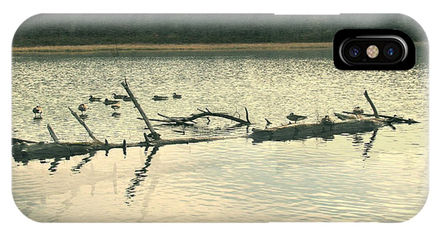 Ducks On The Lake IPhone X Case featuring the photograph Ducky Of A Spring by Debra   Vatalaro