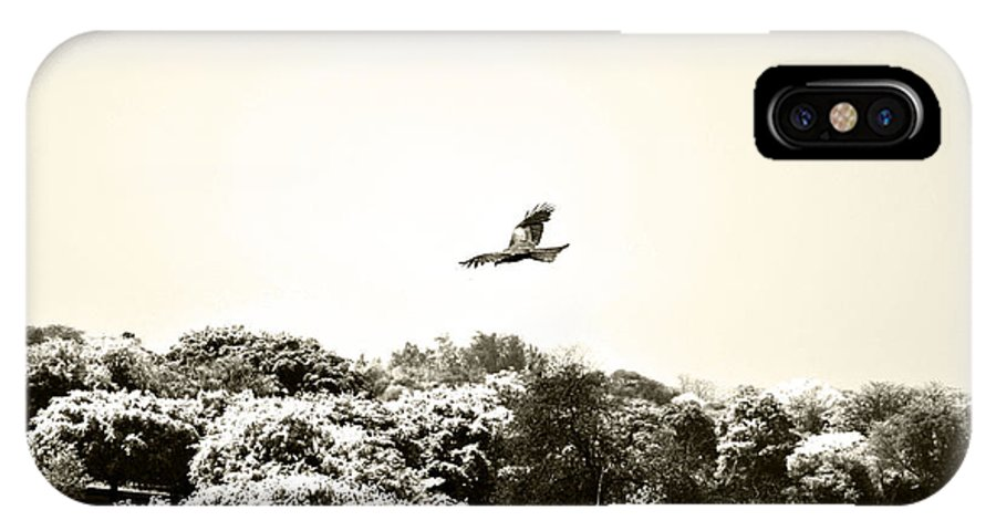 Eagle IPhone X Case featuring the photograph Eagle Flying Above The Forest by Sumit Mehndiratta