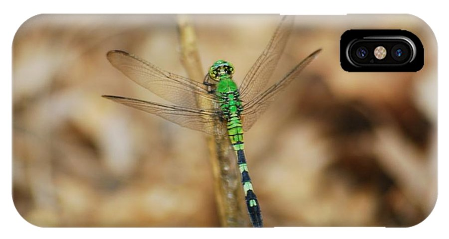 Common IPhone X Case featuring the photograph Eastern Pondhawk 8649 3279 by Michael Peychich