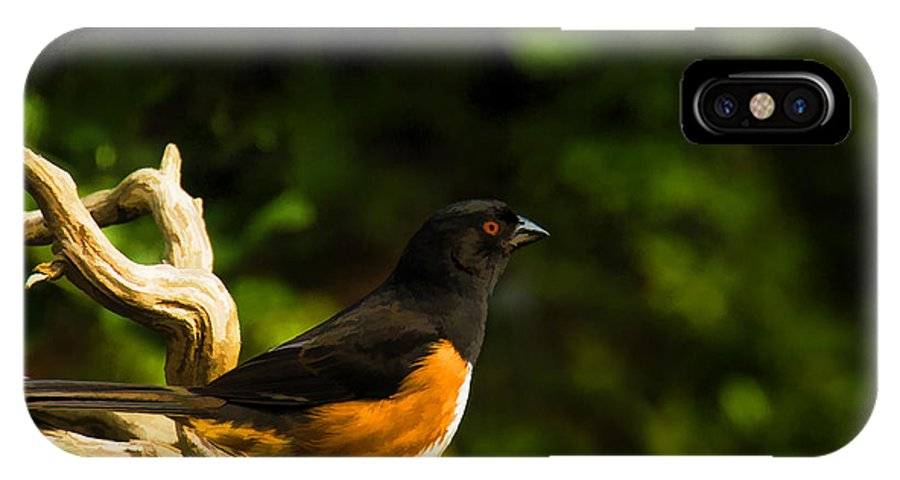 Eastern Towhee IPhone X Case featuring the painting Eastern Towhee by Steven Richardson