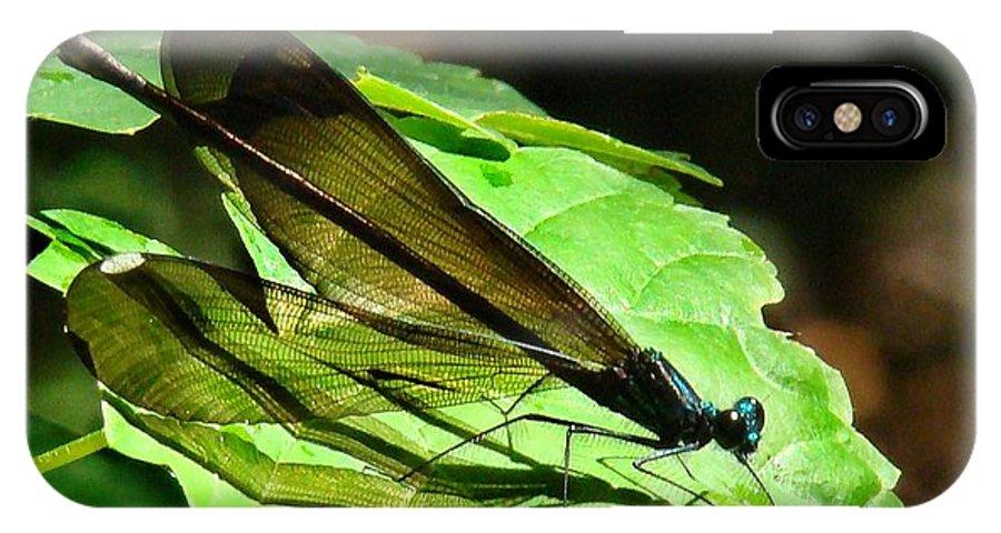 Damselflies IPhone X / XS Case featuring the photograph Ebony Jewelwing Damselfly by Bruce W Krucke