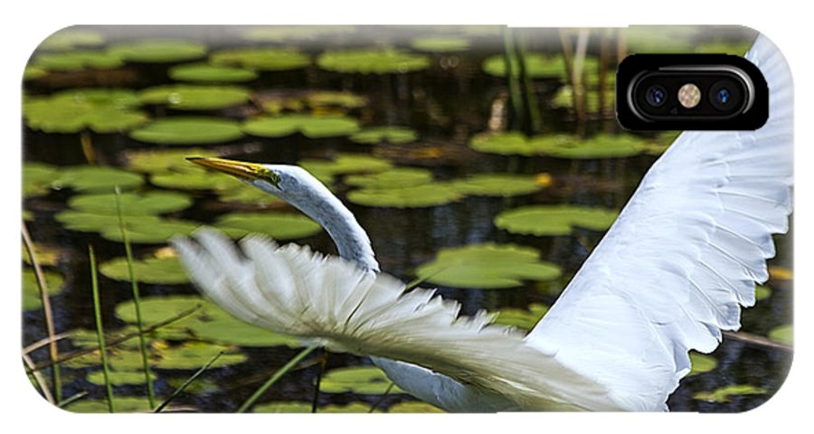 White Egret IPhone X Case featuring the photograph Egret Take Off by Roger Wedegis