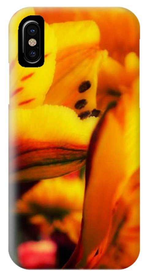 Flower IPhone X Case featuring the photograph Embrace by Leah Moore