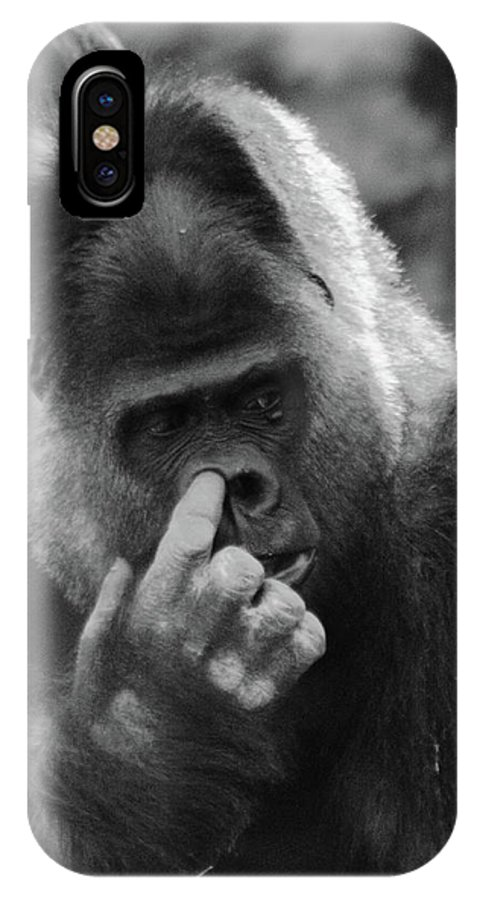 Gorilla IPhone X Case featuring the photograph Enjoy The Moment by Bruce J Robinson