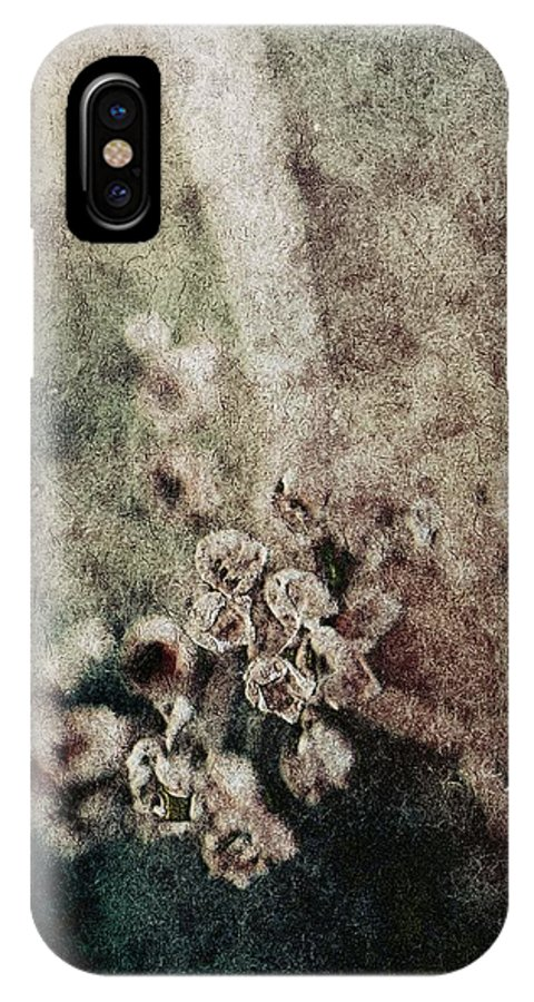 Evanescence IPhone X / XS Case featuring the photograph Evanescence by Mandy Tabatt
