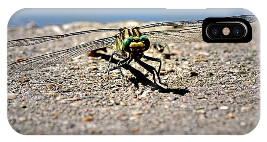 Color Photography IPhone X Case featuring the photograph Eye To Eye With A Dragonfly by Sue Stefanowicz