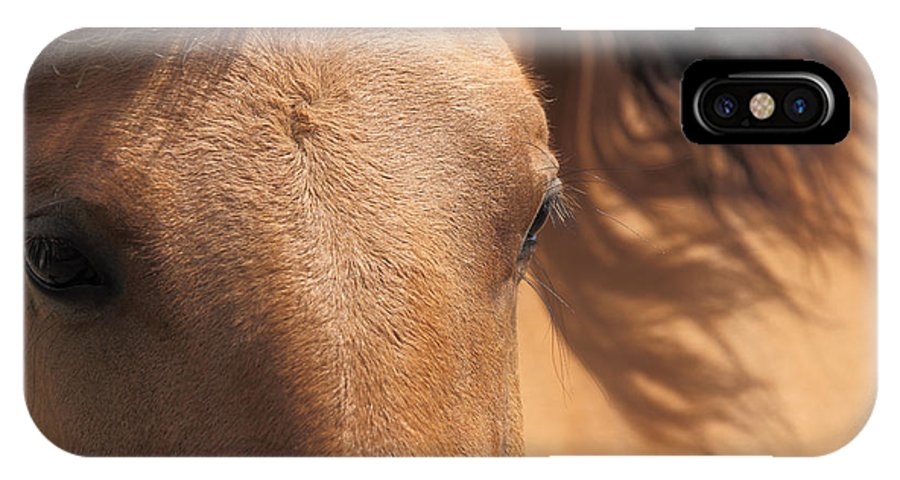 Animal IPhone X Case featuring the photograph Eyes Of A Brown Horse by Tilen Hrovatic