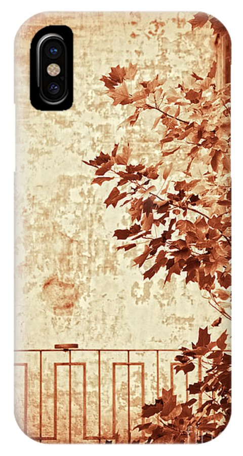Sepia IPhone X Case featuring the photograph Fall II by Silvia Ganora