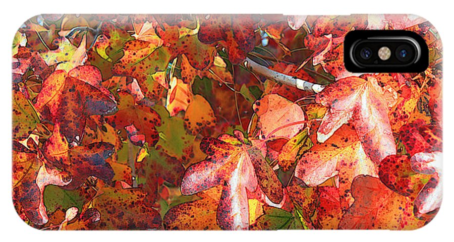 Fall Leaves IPhone X Case featuring the photograph Fall Leaves - Digital Art by Carol Groenen
