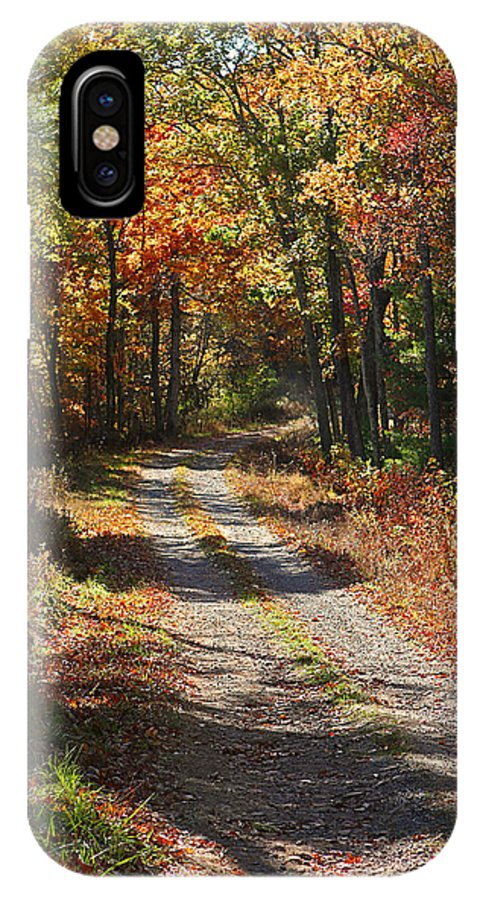 Autumn IPhone X Case featuring the photograph Fall On The Wyrick Trail by Denise Romano
