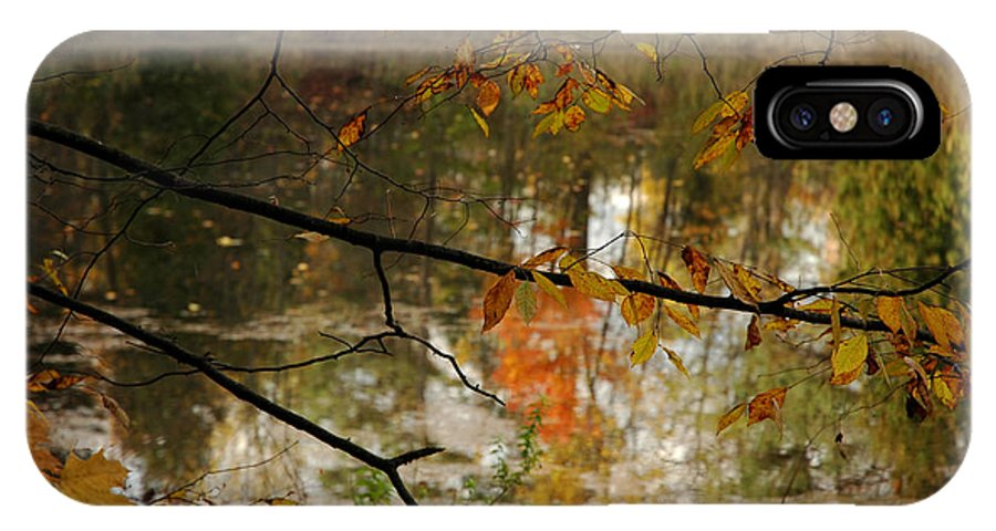 Usa IPhone X / XS Case featuring the photograph Fall River Branches by LeeAnn McLaneGoetz McLaneGoetzStudioLLCcom