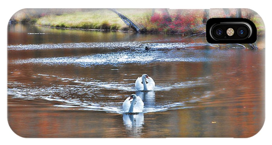 Swans Pair Fall Autumn Color Water Pond Scenic IPhone X Case featuring the photograph Fall Swans by Alice Gipson
