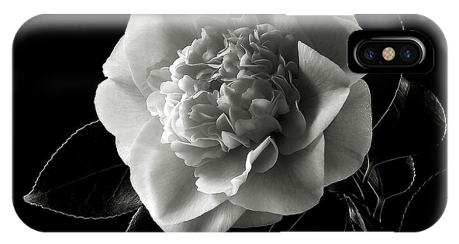 Flower IPhone X Case featuring the photograph Fancy Camellia In Black And White by Endre Balogh