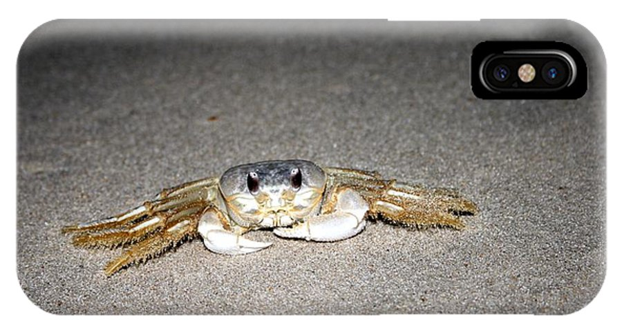 Crab IPhone X Case featuring the photograph Feeling Crabby This Evening by Christopher Hignite