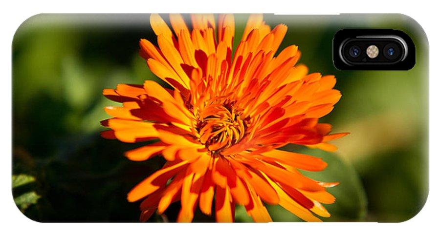 Glowing IPhone X Case featuring the photograph Firey Sunburst by Douglas Barnett