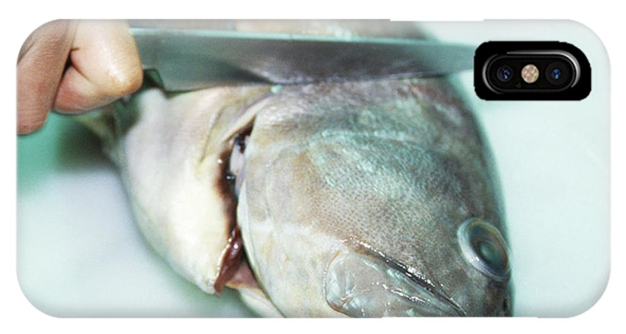 Filleting IPhone X / XS Case featuring the photograph Fish Preparation by Cristina Pedrazzini