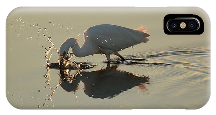 Egret IPhone X Case featuring the photograph Fishing by Adam Jewell