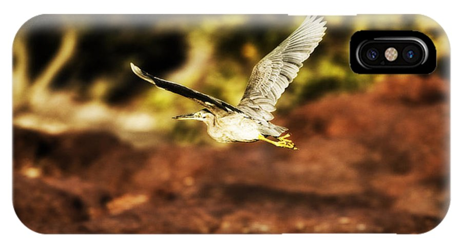 Flight IPhone X Case featuring the photograph Flight Of The Heron by Douglas Barnard