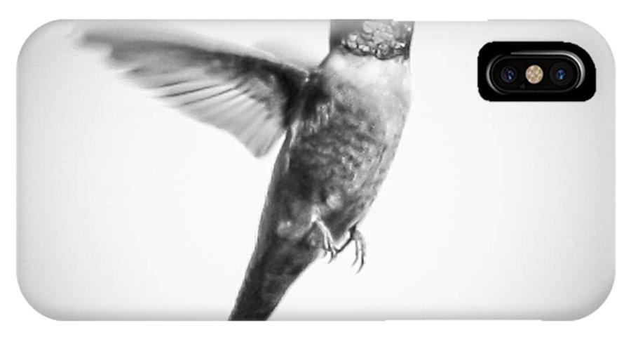 Hummingbird IPhone X Case featuring the photograph Flight Of The Hummingbird by Toma Caul