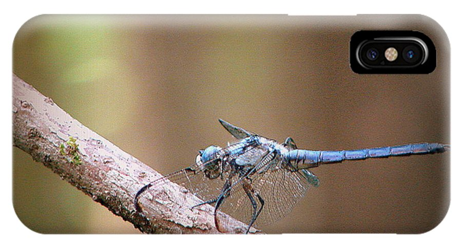 Anisoptera IPhone X Case featuring the photograph Flit by Priscilla Richardson