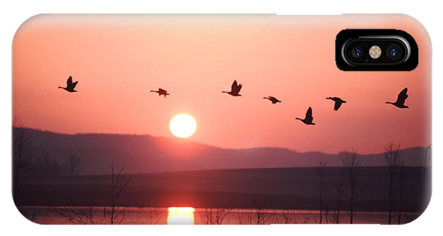 Geese IPhone X Case featuring the photograph Flock Of Canada Geese Flying by Ira Block