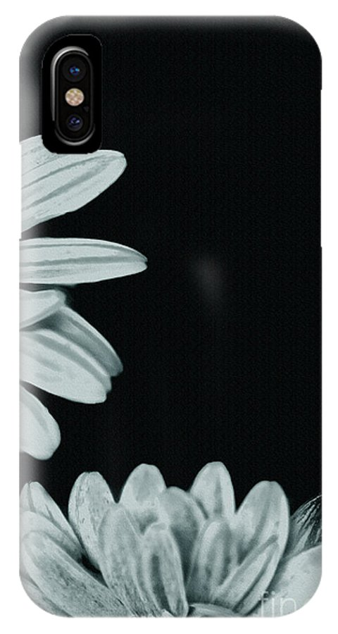 Flora IPhone X Case featuring the photograph Flora Greetings by Kim Henderson