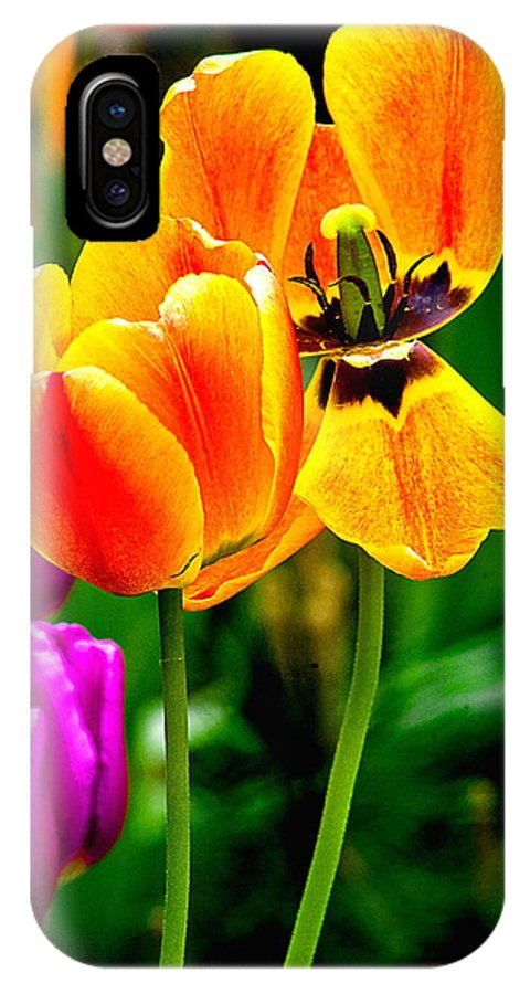 IPhone X / XS Case featuring the photograph Flower 19 by Burney Lieberman