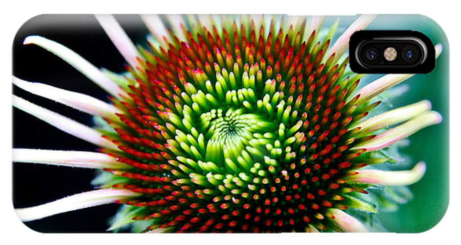IPhone X / XS Case featuring the photograph Flower 31 by Burney Lieberman