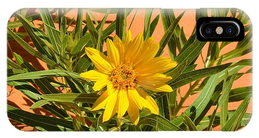 Flower IPhone X Case featuring the photograph Flower by Mark Bowmer