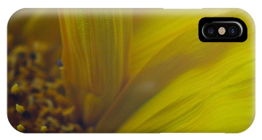 Sunflower IPhone X Case featuring the photograph Flowing Petals by Melany Raubolt