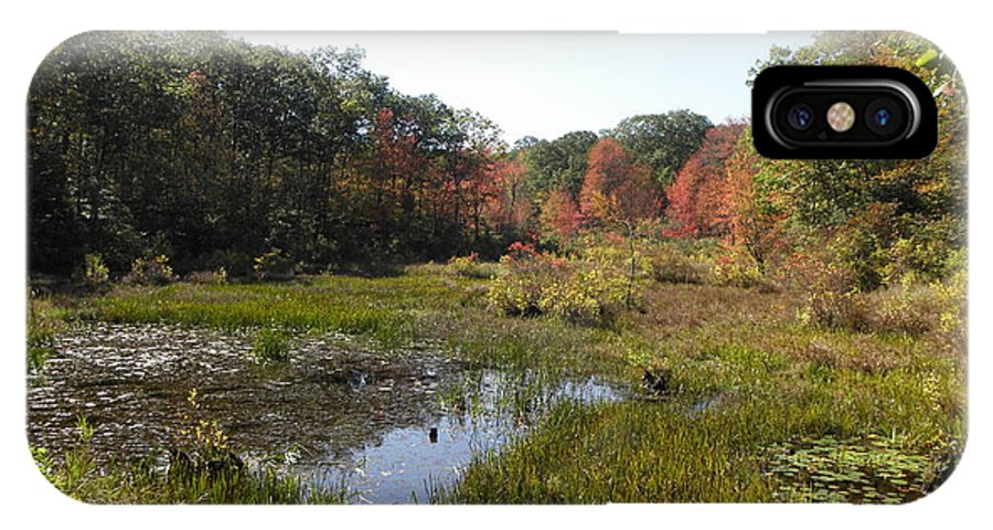 Foliage IPhone X / XS Case featuring the photograph foliage in the swamp lands of CT by Kim Galluzzo Wozniak