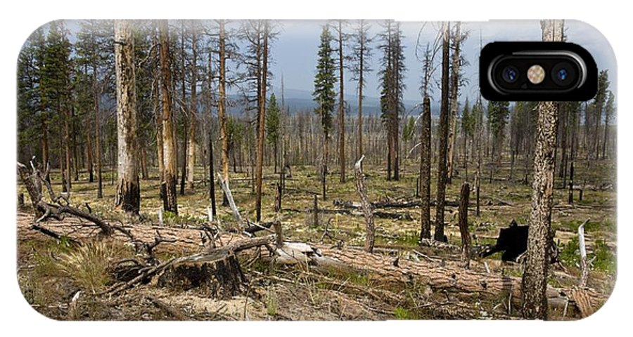 North America IPhone X Case featuring the photograph Forest Fire Aftermath by Bob Gibbons