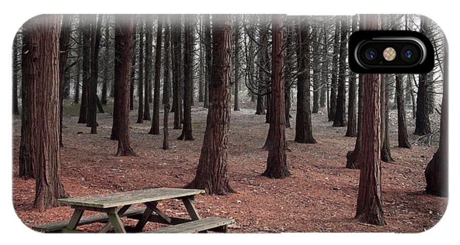 Autumn IPhone X Case featuring the photograph Forest Table by Carlos Caetano