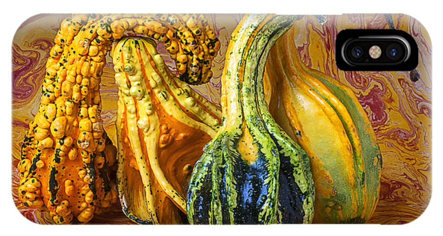 Four Green IPhone X Case featuring the photograph Four Gourds by Garry Gay