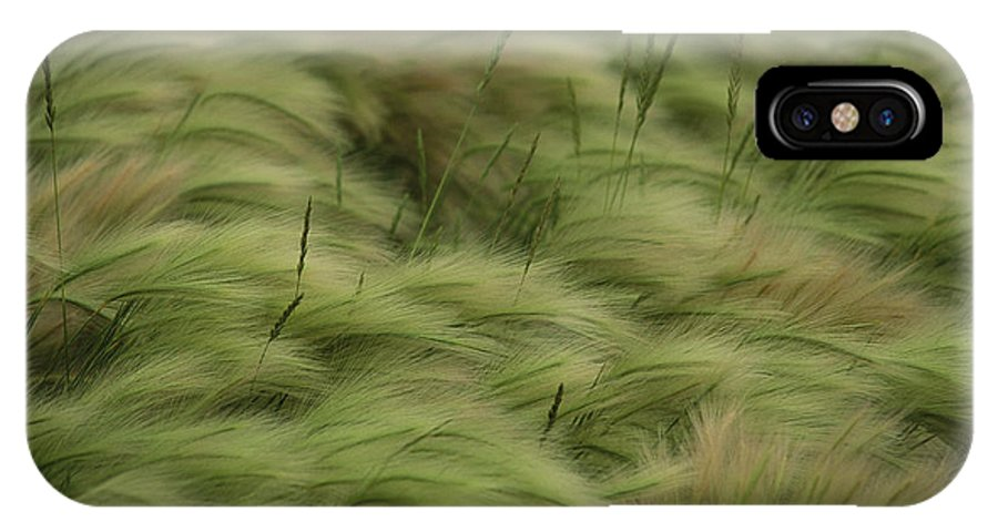 Day IPhone X / XS Case featuring the photograph Foxtail Barley And Western Wheatgrass by Annie Griffiths