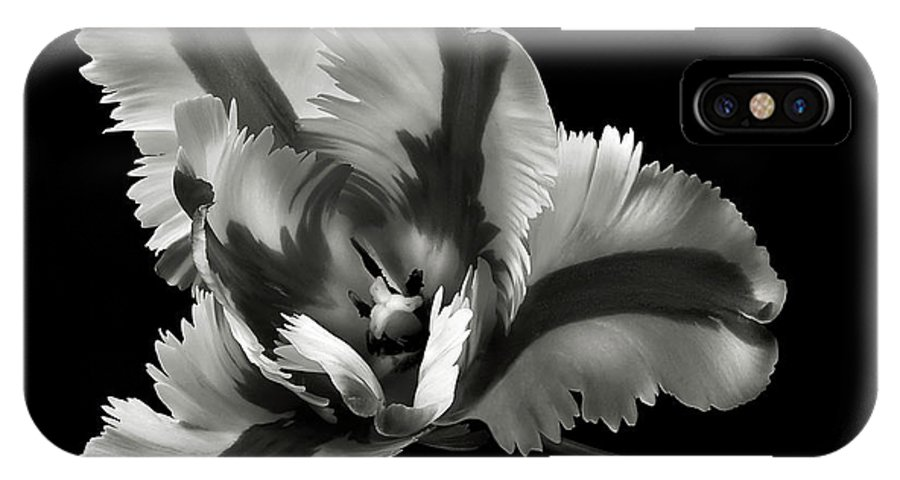 Flower IPhone X Case featuring the photograph French Tulip In Black And White by Endre Balogh
