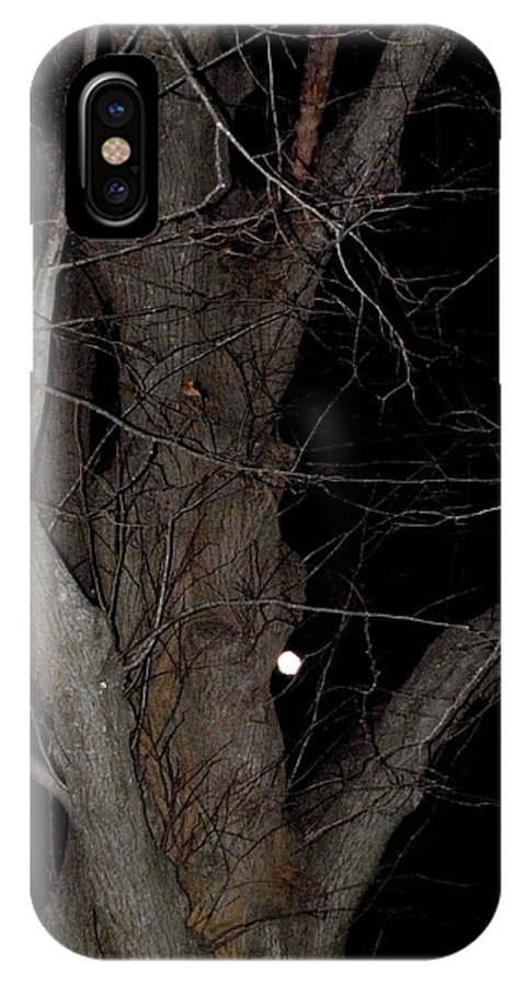 Full IPhone X Case featuring the photograph Full Moon Beyond The Old Tree by Kim Galluzzo Wozniak