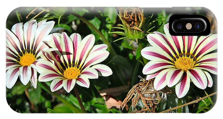 Flowers IPhone X Case featuring the photograph Garden Beauties by Steve McKinzie
