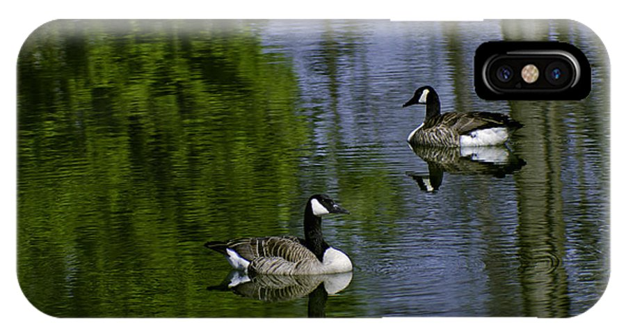 Geese IPhone X Case featuring the photograph Geese On The Pond by LeeAnn McLaneGoetz McLaneGoetzStudioLLCcom