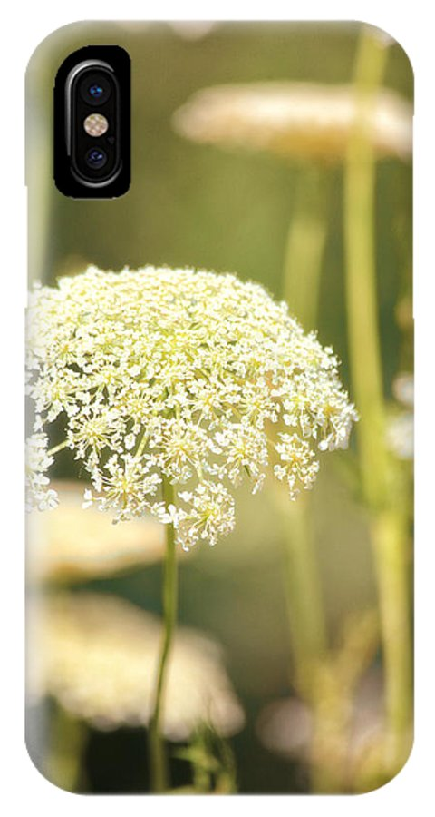 Flowers IPhone X Case featuring the photograph Gently by Karol Livote