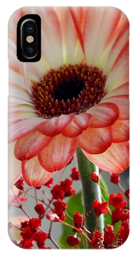 Gerbera IPhone X Case featuring the photograph Gerber Daisy by Ron Telford