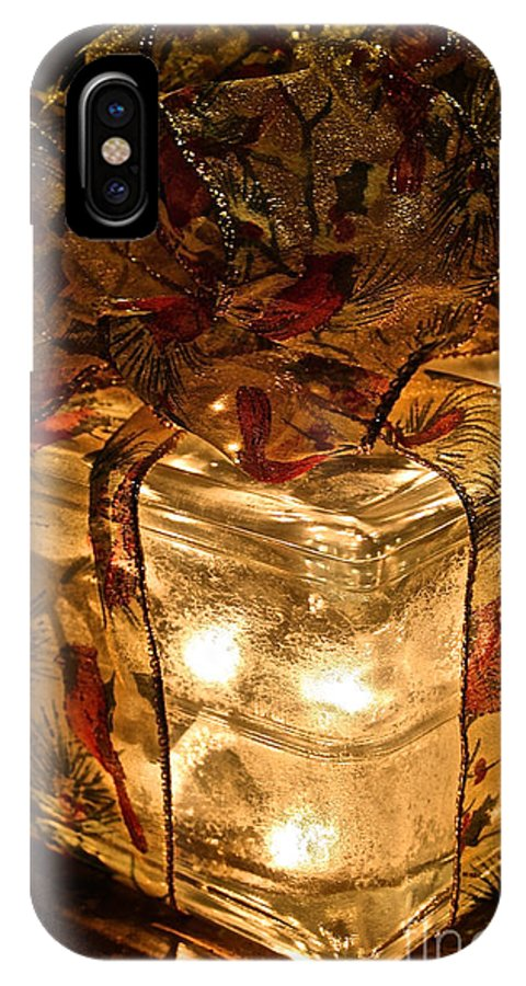 Gift IPhone X Case featuring the photograph Gifts For Glass Houses by Susan Herber