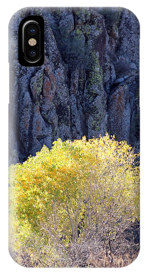 Landscape IPhone X Case featuring the photograph Gilded Autumn by Alycia Christine