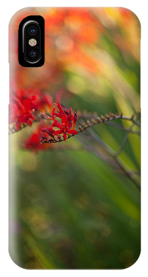 Flower IPhone X Case featuring the photograph Glorious Red by Mike Reid