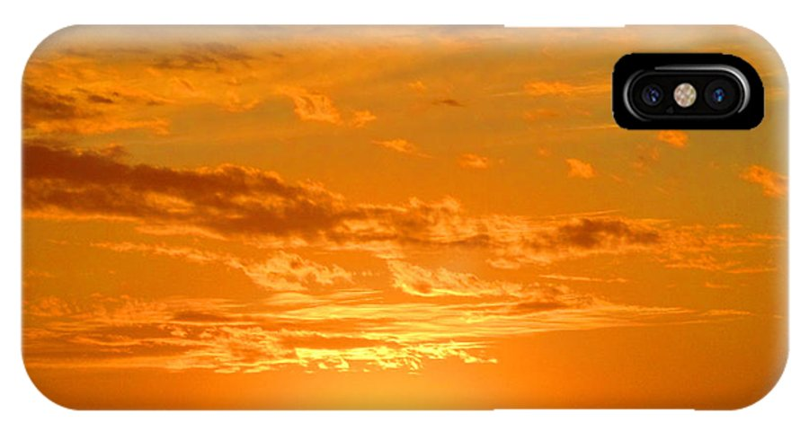 Gold IPhone X Case featuring the photograph Golden Evening by Lisa Stanley