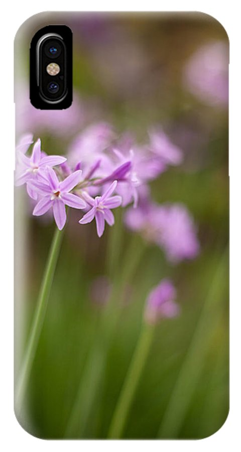 Flower IPhone X / XS Case featuring the photograph Gracious Stalks by Mike Reid